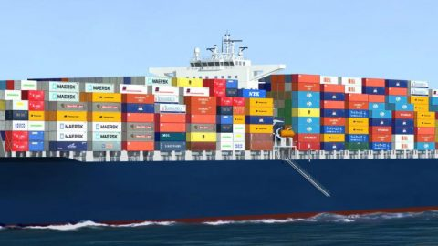 LCL Sea Freight
